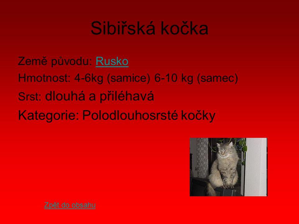 Sibiřská kočka Země původu: RuskoRusko Hmotnost: 4-6kg (samice) 6-10 kg (samec) Srst: dlouhá a přiléhavá Kategorie: Polodlouhosrsté kočky Zpět do obsa