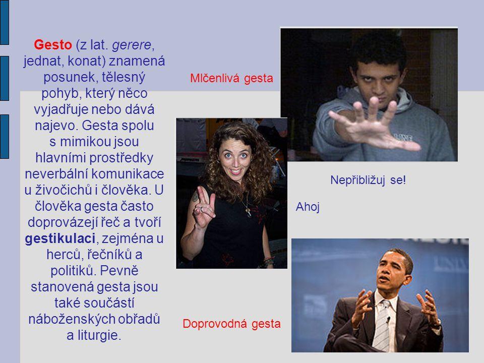 Dělení jazyků:  a) přirozené (lidské) – nejdokonalejší prostředek dorozumívání, mají zvukovou i grafickou podobu, vznikly dlouhým vývojem lidské společnosti, je jich více než 3000 (čeština, angličtina, japonština atd.)  b) umělé – byly uměle vytvořeny (znaková řeč hluchoněmých, vlajkové nebo světelné signály; systém matematických, fyzikálních, chemických znaků; esperanto, ido; programovací jazyky atd.)