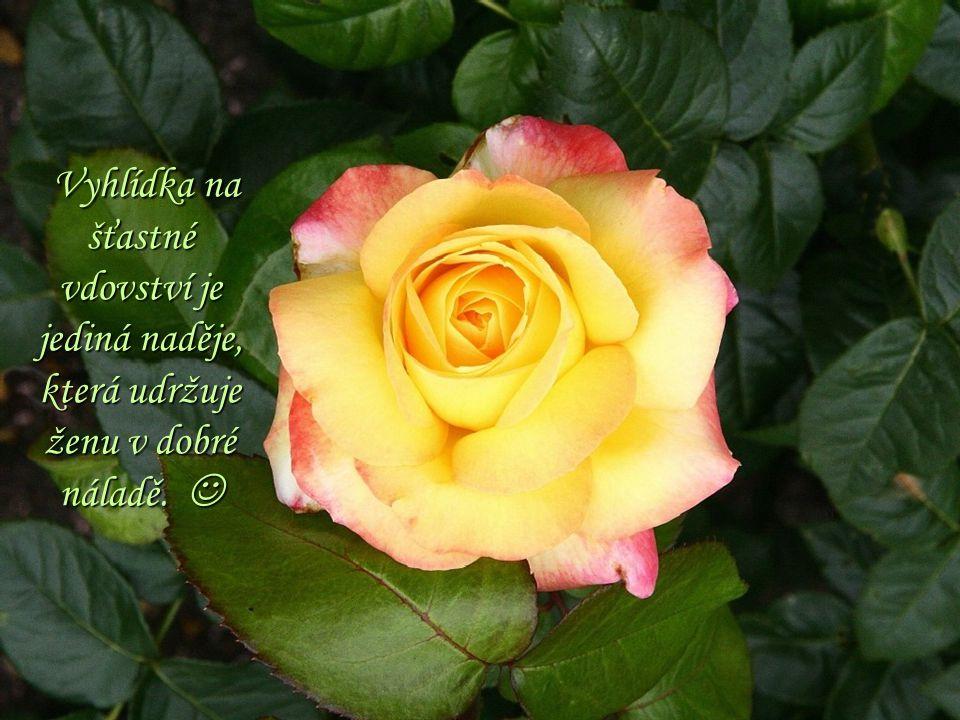 Vyhlídka na šťastné vdovství je jediná naděje, která udržuje ženu v dobré náladě.