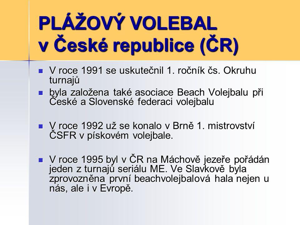 České úspěchy V roce1996 reprezentační týmy Celbová – Dosoudilová, a Palinek - Pakosta zvítězily na ME V roce1996 reprezentační týmy Celbová – Dosoudilová, a Palinek - Pakosta zvítězily na ME Celbová - Dosoudilová si svůj triumf na ME zopakovaly ještě v roce 1998 Celbová - Dosoudilová si svůj triumf na ME zopakovaly ještě v roce 1998 1999 dvojice Džavoronok - Pakosta na Světové sérii v Tenerife porazili brazilské mistry světa 1999 dvojice Džavoronok - Pakosta na Světové sérii v Tenerife porazili brazilské mistry světa V roce 2001 se na světovém šampionátu umístily jako třetí Celbová s Dosoudilovou.