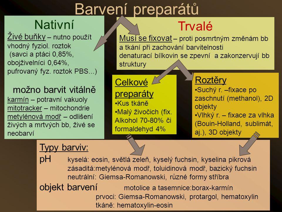 Nativní Živé buňky – nutno použít vhodný fyziol. roztok (savci a ptáci 0,85%, obojživelníci 0,64%, pufrovaný fyz. roztok PBS...) možno barvit vitálně