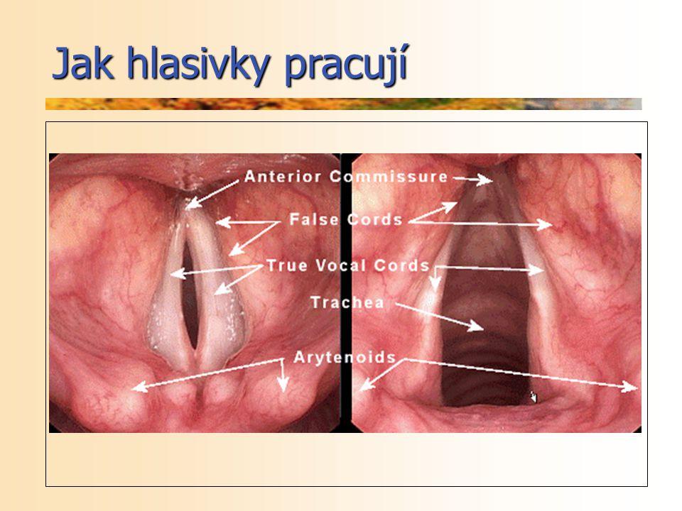 Operace – přímá laryngoskopie