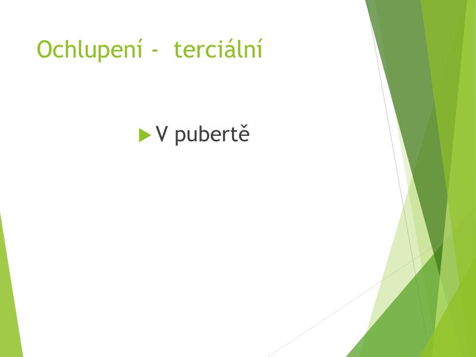 Ochlupení - terciální  V pubertě