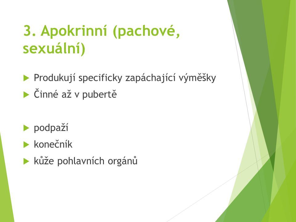 3. Apokrinní (pachové, sexuální)  Produkují specificky zapáchající výměšky  Činné až v pubertě  podpaží  konečník  kůže pohlavních orgánů