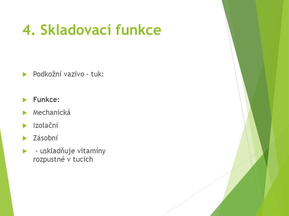 4. Skladovací funkce  Podkožní vazivo – tuk:  Funkce:  Mechanická  Izolační  Zásobní  - uskladňuje vitamíny rozpustné v tucích