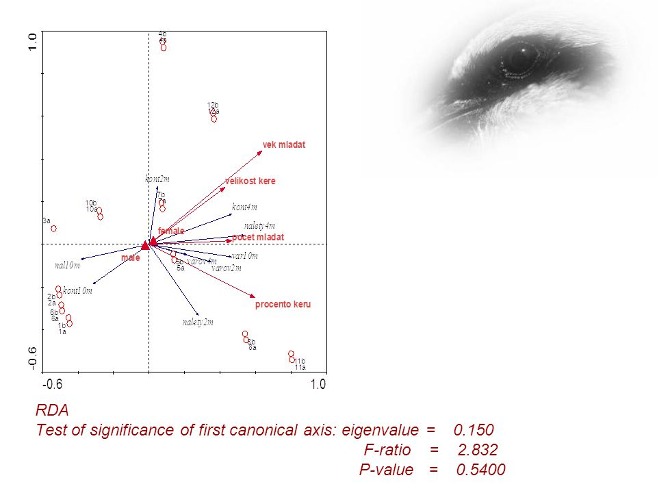 RDA Test of significance of first canonical axis: eigenvalue = 0.150 F-ratio = 2.832 P-value = 0.5400