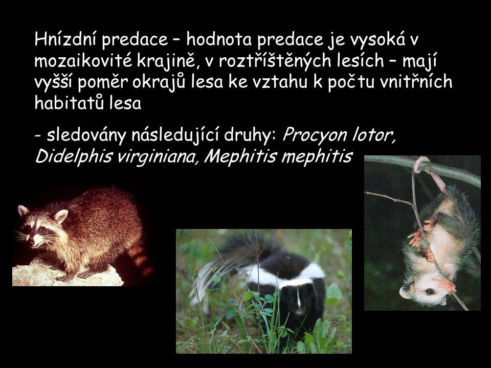 Hnízdní predace – hodnota predace je vysoká v mozaikovité krajině, v roztříštěných lesích – mají vyšší poměr okrajů lesa ke vztahu k počtu vnitřních habitatů lesa - sledovány následující druhy: Procyon lotor, Didelphis virginiana, Mephitis mephitis
