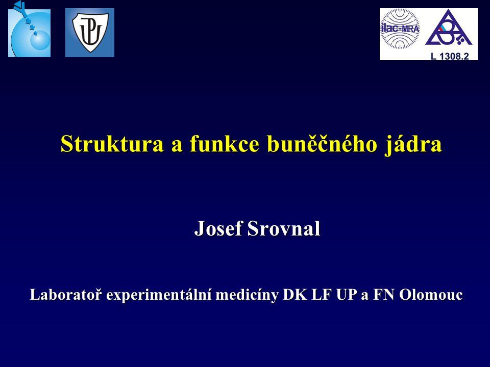 Struktura a funkce buněčného jádra Josef Srovnal Laboratoř experimentální medicíny DK LF UP a FN Olomouc