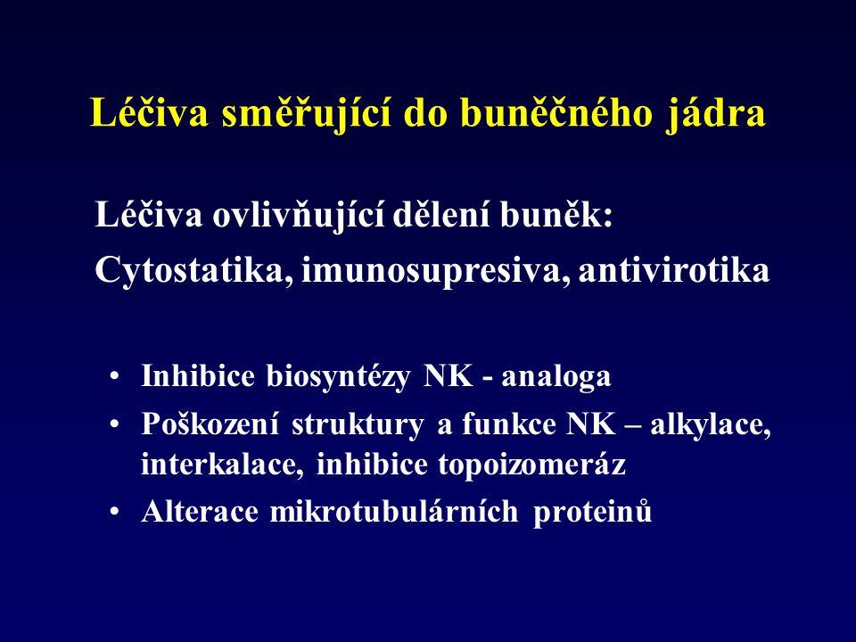 Léčiva směřující do buněčného jádra Inhibice biosyntézy NK - analoga Poškození struktury a funkce NK – alkylace, interkalace, inhibice topoizomeráz Al