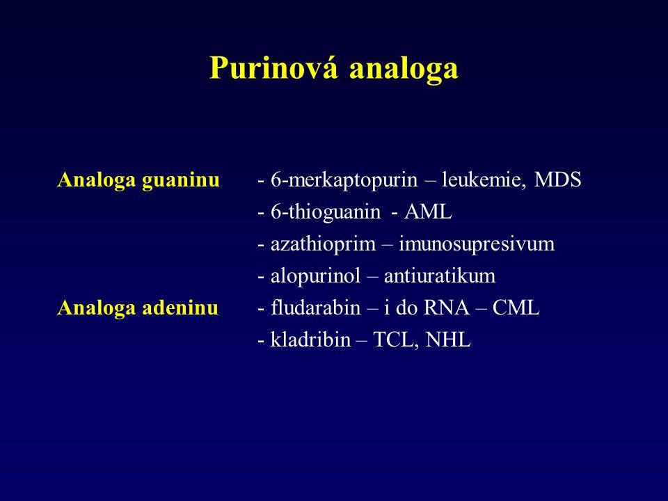 Purinová analoga Analoga guaninu - 6-merkaptopurin – leukemie, MDS - 6-thioguanin - AML - azathioprim – imunosupresivum - alopurinol – antiuratikum An