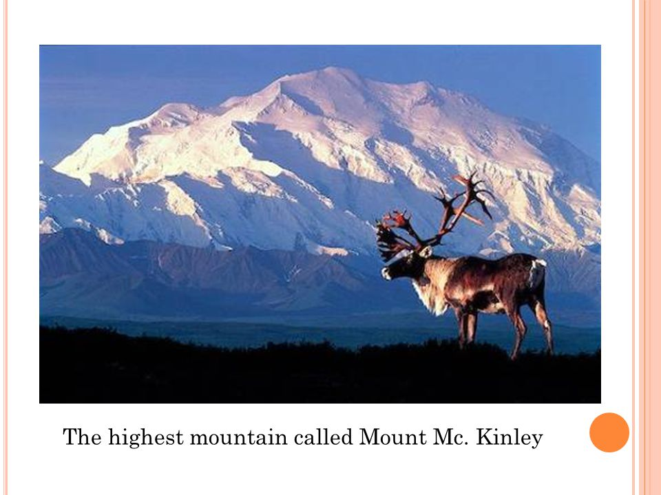 The highest mountain called Mount Mc. Kinley