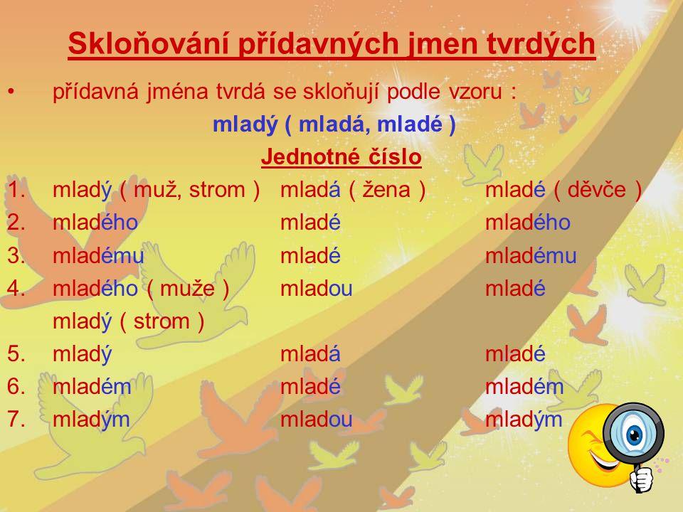 Skloňování přídavných jmen tvrdých přídavná jména tvrdá se skloňují podle vzoru : mladý ( mladá, mladé ) Jednotné číslo 1.mladý ( muž, strom )mladá (