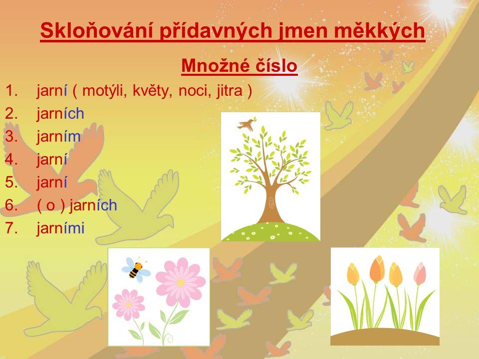 Skloňování přídavných jmen měkkých Množné číslo 1.jarní ( motýli, květy, noci, jitra ) 2.jarních 3.jarním 4.jarní 5.jarní 6.( o ) jarních 7.jarními