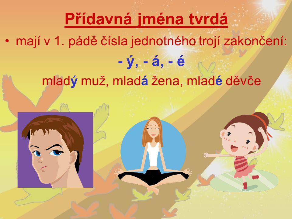 Přídavná jména tvrdá mají v 1. pádě čísla jednotného trojí zakončení: - ý, - á, - é mladý muž, mladá žena, mladé děvče