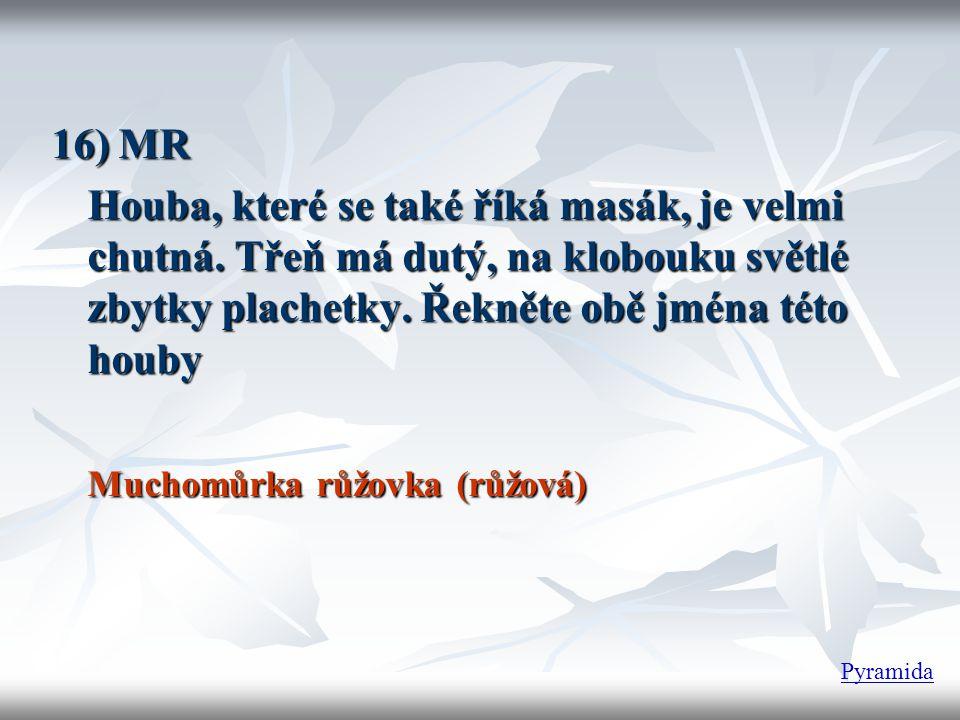 16) MR Houba, které se také říká masák, je velmi chutná.
