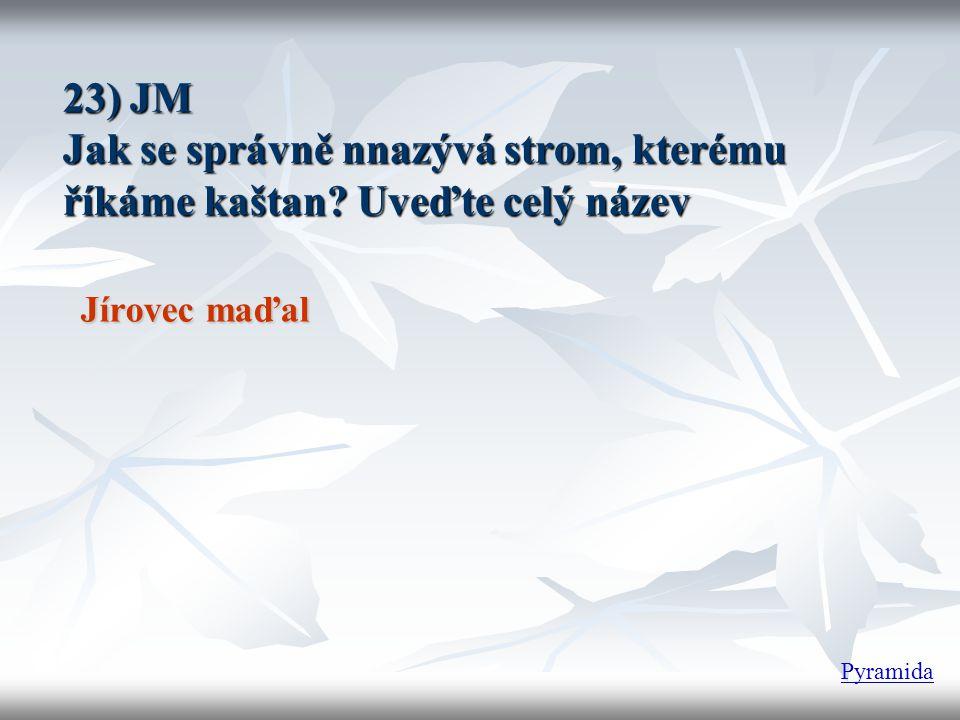23) JM Jak se správně nnazývá strom, kterému říkáme kaštan? Uveďte celý název Jírovec maďal Pyramida