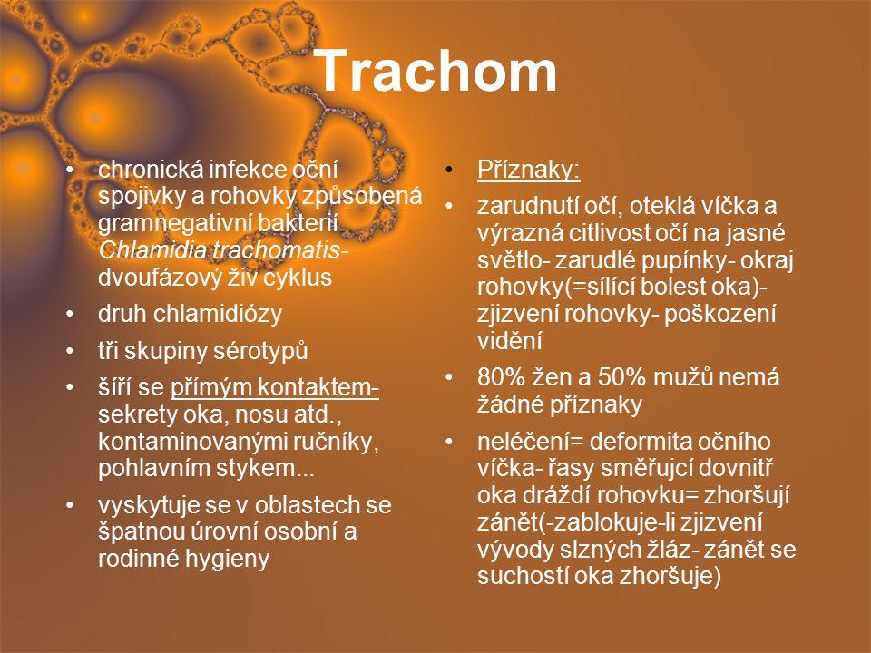 Trachom chronická infekce oční spojivky a rohovky způsobená gramnegativní bakterií Chlamidia trachomatis- dvoufázový živ cyklus druh chlamidiózy tři s