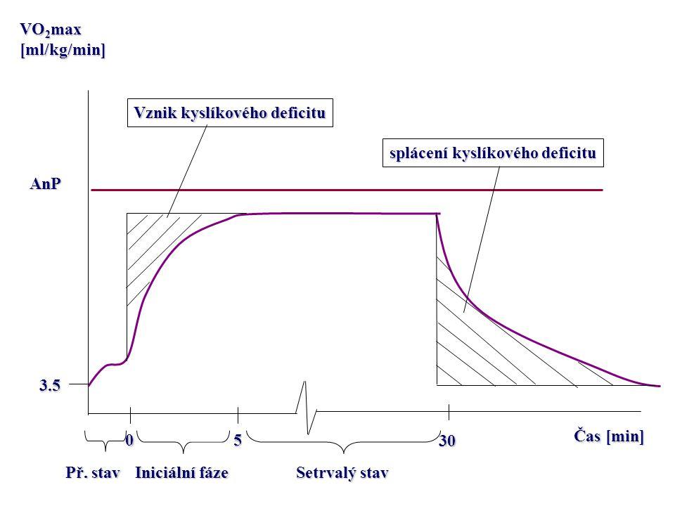Čas [min] VO 2 max [ml/kg/min] AnP 0 5 30 3.5 Př. stav Iniciální fáze Setrvalý stav Vznik kyslíkového deficitu splácení kyslíkového deficitu