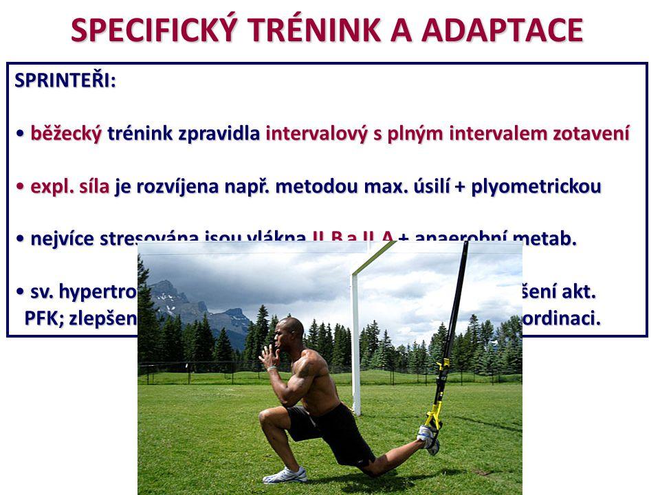 SPECIFICKÝ TRÉNINK A ADAPTACE SPRINTEŘI: běžecký trénink zpravidla intervalový s plným intervalem zotavení běžecký trénink zpravidla intervalový s pln