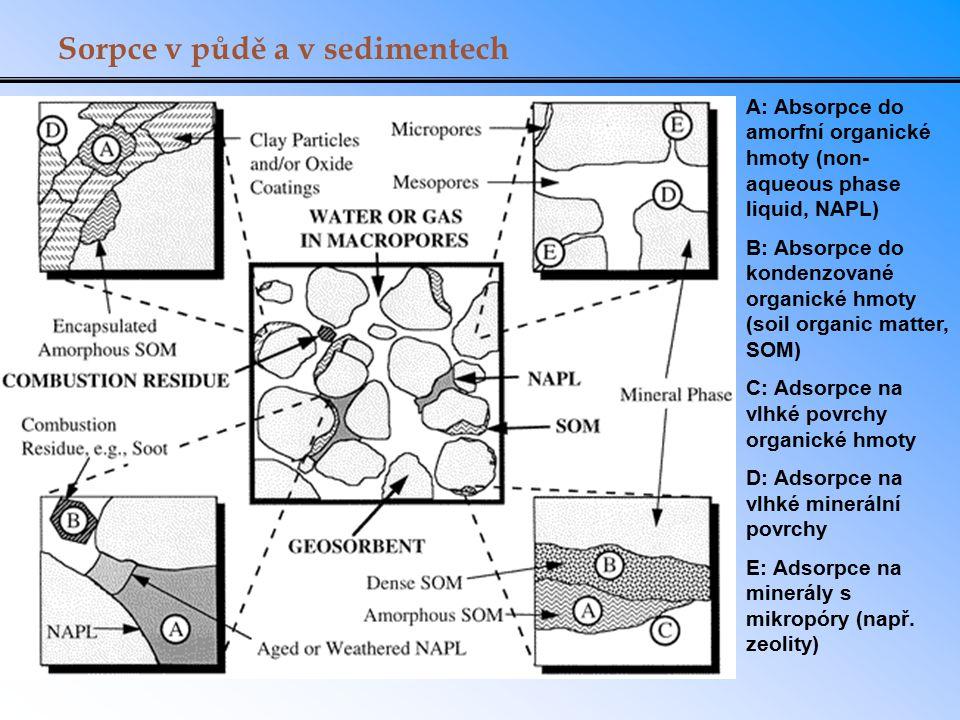 Sorpce v půdě a v sedimentech A: Absorpce do amorfní organické hmoty (non- aqueous phase liquid, NAPL) B: Absorpce do kondenzované organické hmoty (so