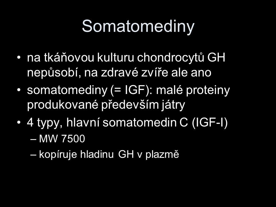 Somatomediny na tkáňovou kulturu chondrocytů GH nepůsobí, na zdravé zvíře ale ano somatomediny (= IGF): malé proteiny produkované především játry 4 ty