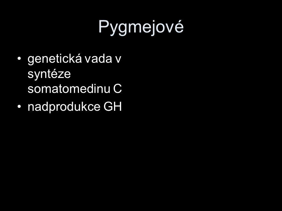 Pygmejové genetická vada v syntéze somatomedinu C nadprodukce GH