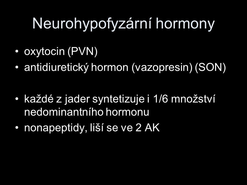 Neurohypofyzární hormony oxytocin (PVN) antidiuretický hormon (vazopresin) (SON) každé z jader syntetizuje i 1/6 množství nedominantního hormonu nonap