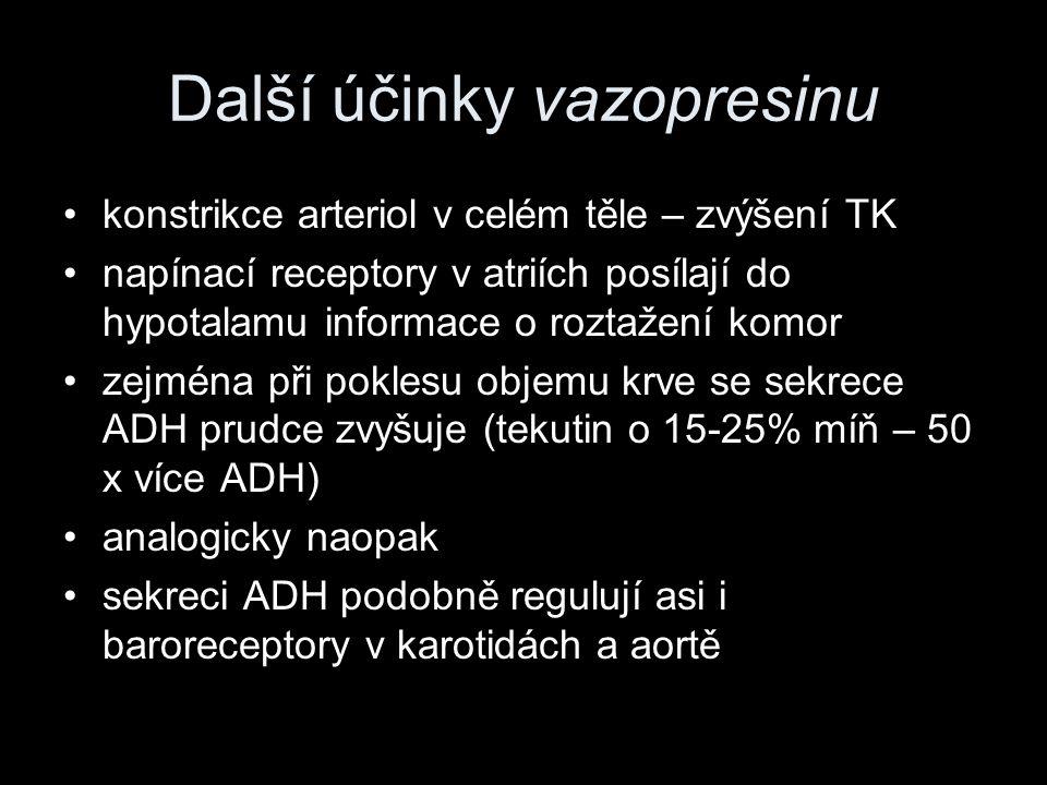 Další účinky vazopresinu konstrikce arteriol v celém těle – zvýšení TK napínací receptory v atriích posílají do hypotalamu informace o roztažení komor
