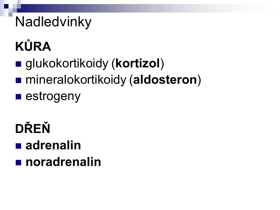 Nadledvinky KŮRA glukokortikoidy (kortizol) mineralokortikoidy (aldosteron) estrogeny DŘEŇ adrenalin noradrenalin