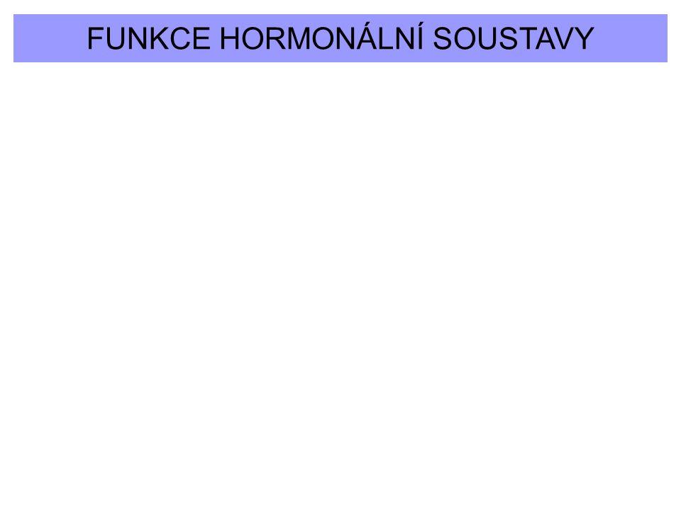 FUNKCE HORMONÁLNÍ SOUSTAVY