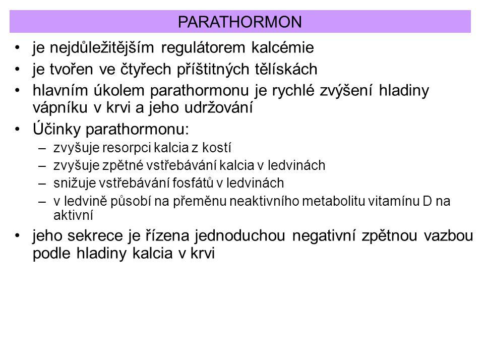 PARATHORMON je nejdůležitějším regulátorem kalcémie je tvořen ve čtyřech příštitných tělískách hlavním úkolem parathormonu je rychlé zvýšení hladiny v