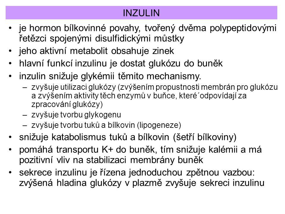 INZULIN je hormon bílkovinné povahy, tvořený dvěma polypeptidovými řetězci spojenými disulfidickými můstky jeho aktivní metabolit obsahuje zinek hlavn