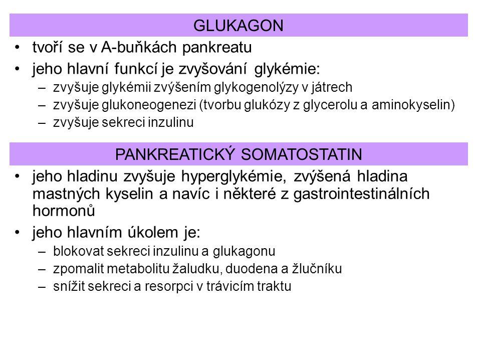 PANKREATICKÝ SOMATOSTATIN tvoří se v A-buňkách pankreatu jeho hlavní funkcí je zvyšování glykémie: –zvyšuje glykémii zvýšením glykogenolýzy v játrech