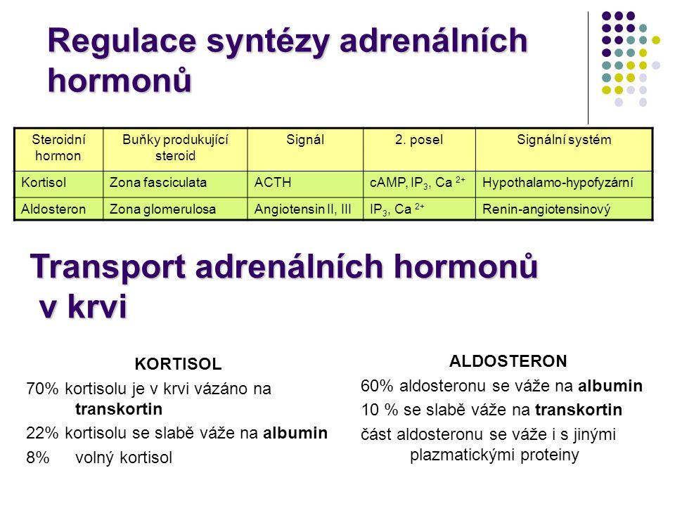 Regulace syntézy adrenálních hormonů Steroidní hormon Buňky produkující steroid Signál2. poselSignální systém KortisolZona fasciculataACTHcAMP, IP 3,
