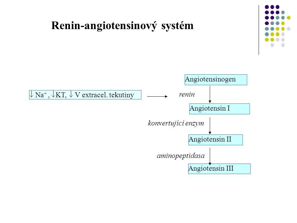  Na +,  KT,  V extracel. tekutiny renin Angiotensinogen Angiotensin I Angiotensin II Angiotensin III konvertující enzym aminopeptidasa Renin-angiot
