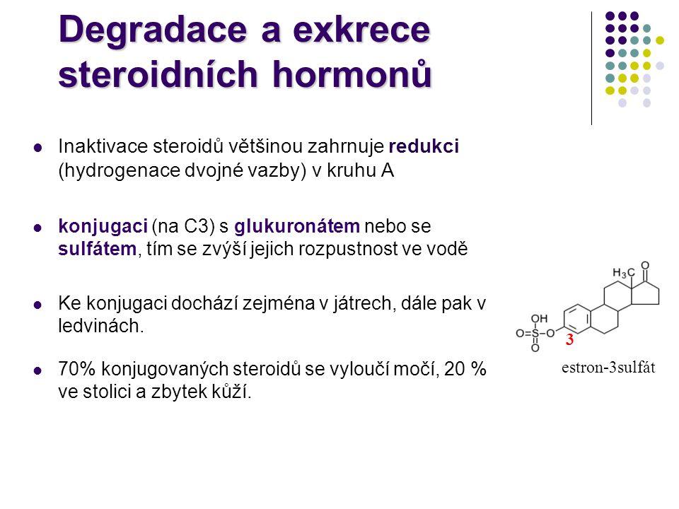Degradace a exkrece steroidních hormonů Inaktivace steroidů většinou zahrnuje redukci (hydrogenace dvojné vazby) v kruhu A konjugaci (na C3) s glukuro