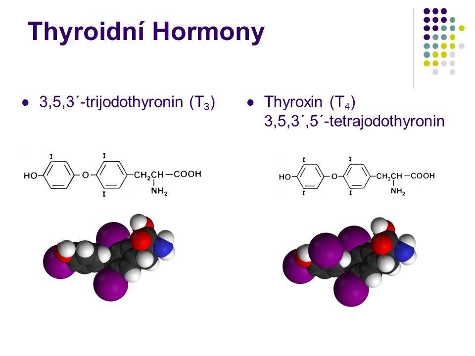 3,5,3´-trijodothyronin (T 3 ) Thyroxin (T 4 ) 3,5,3´,5´-tetrajodothyronin Thyroidní Hormony