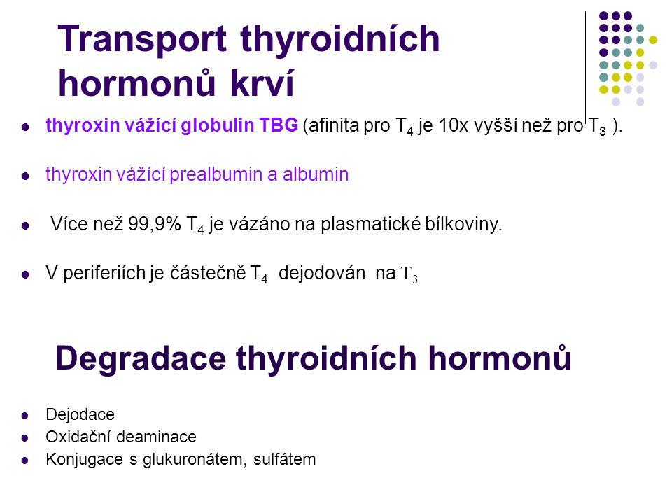 Transport thyroidních hormonů krví thyroxin vážící globulin TBG (afinita pro T 4 je 10x vyšší než pro T 3 ). thyroxin vážící prealbumin a albumin Více
