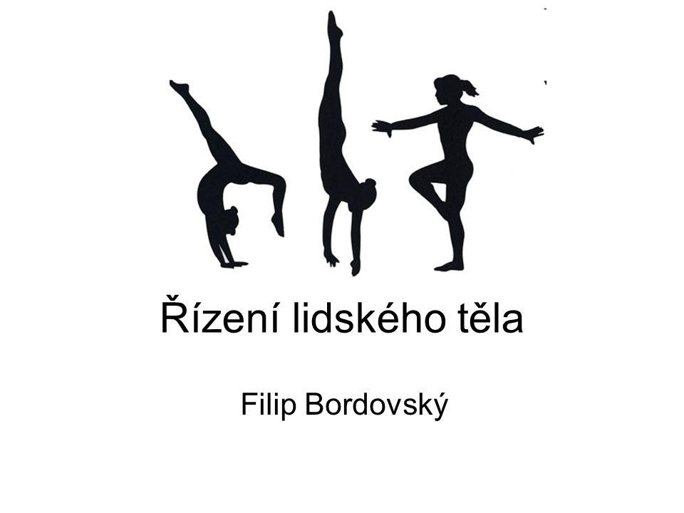 Řízení lidského těla Filip Bordovský