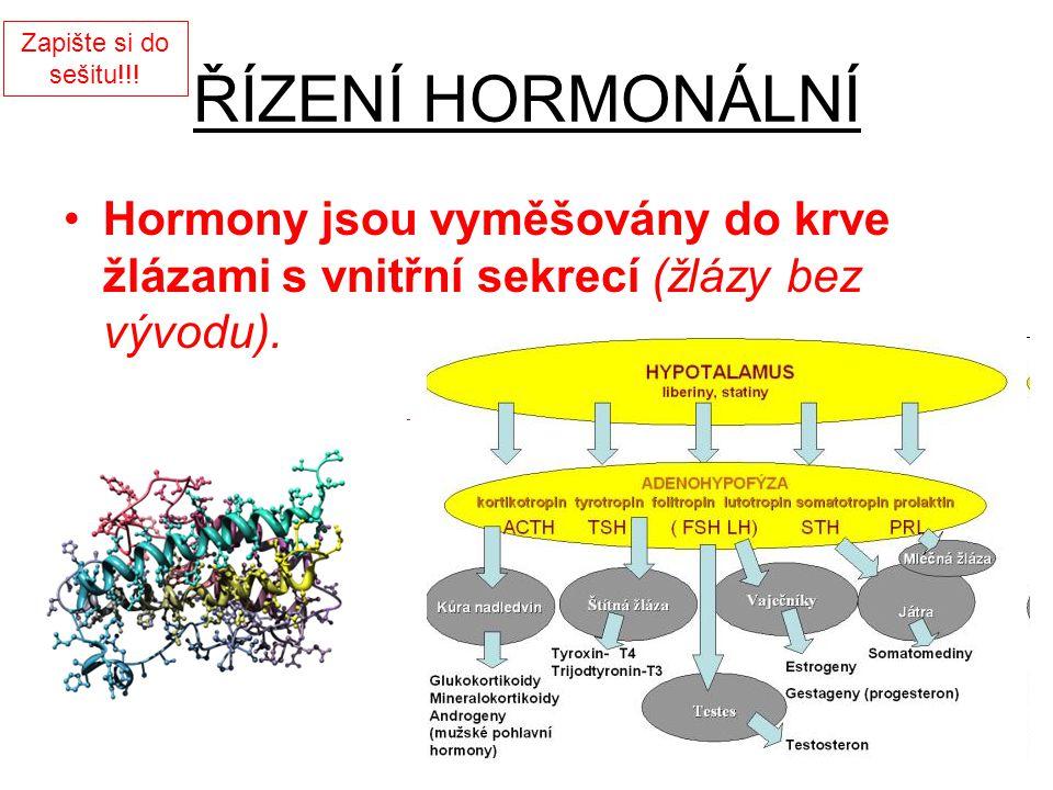 ŘÍZENÍ HORMONÁLNÍ Hormony jsou vyměšovány do krve žlázami s vnitřní sekrecí (žlázy bez vývodu). Zapište si do sešitu!!!