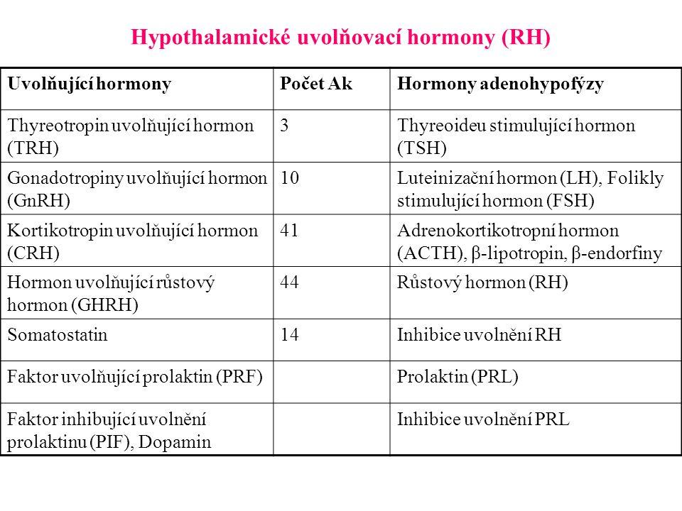 Hypothalamické uvolňovací hormony (RH) Uvolňující hormonyPočet AkHormony adenohypofýzy Thyreotropin uvolňující hormon (TRH) 3Thyreoideu stimulující ho