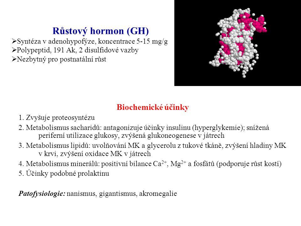 Biochemické účinky 1. Zvyšuje proteosyntézu 2. Metabolismus sacharidů: antagonizuje účinky insulinu (hyperglykemie); snížená periferní utilizace gluko