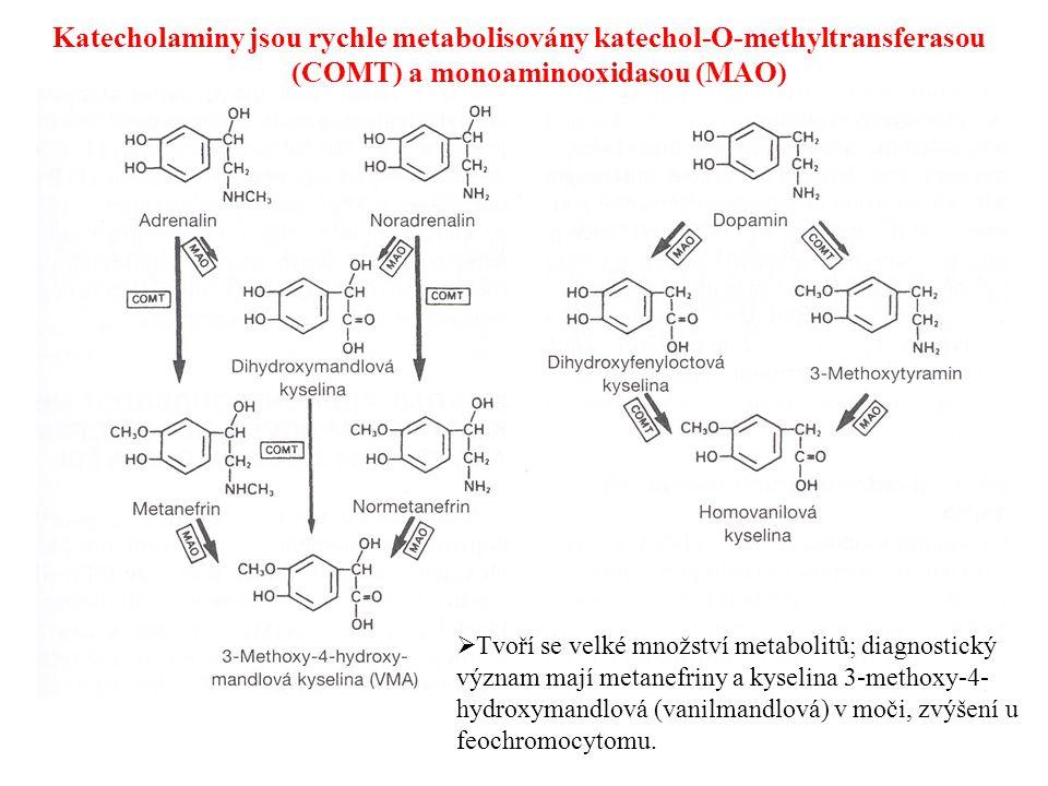 Katecholaminy jsou rychle metabolisovány katechol-O-methyltransferasou (COMT) a monoaminooxidasou (MAO)  Tvoří se velké množství metabolitů; diagnost