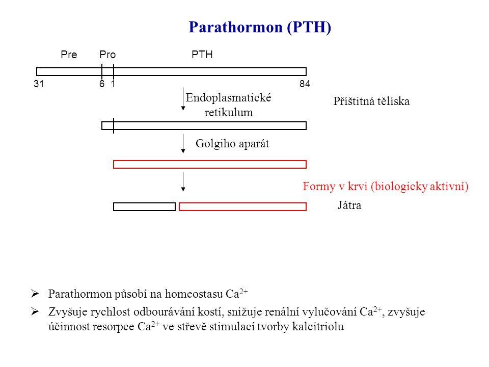  Parathormon působí na homeostasu Ca 2+  Zvyšuje rychlost odbourávání kostí, snižuje renální vylučování Ca 2+, zvyšuje účinnost resorpce Ca 2+ ve st