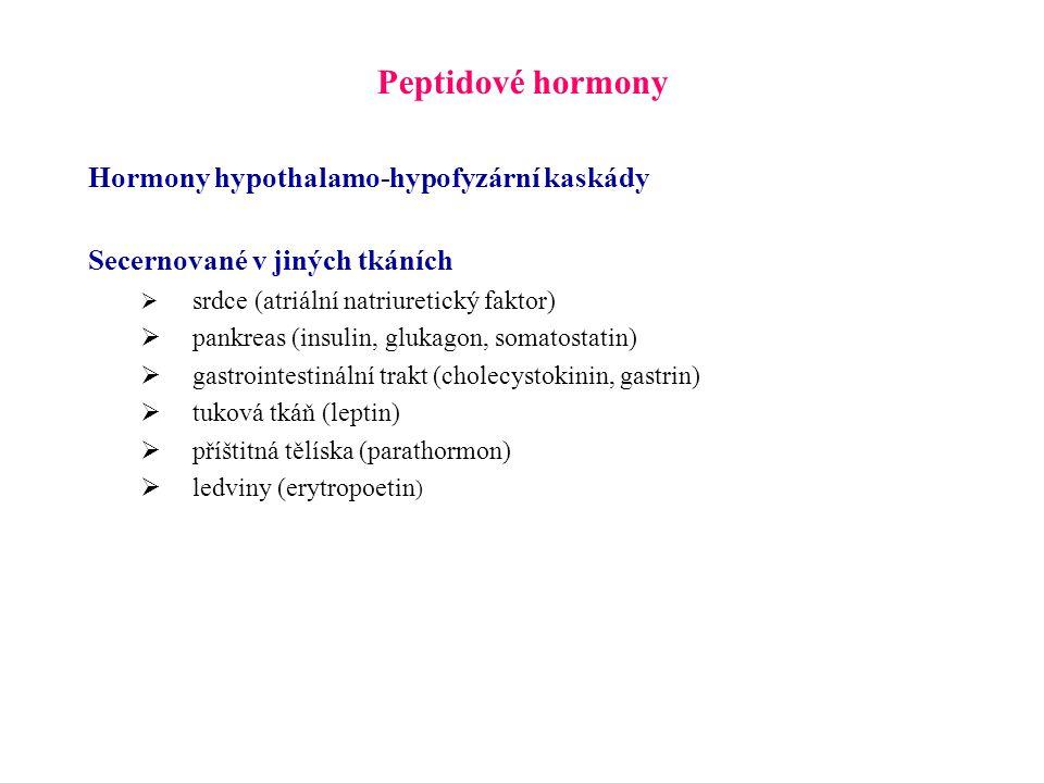 Peptidové hormony Hormony hypothalamo-hypofyzární kaskády Secernované v jiných tkáních  srdce (atriální natriuretický faktor)  pankreas (insulin, gl