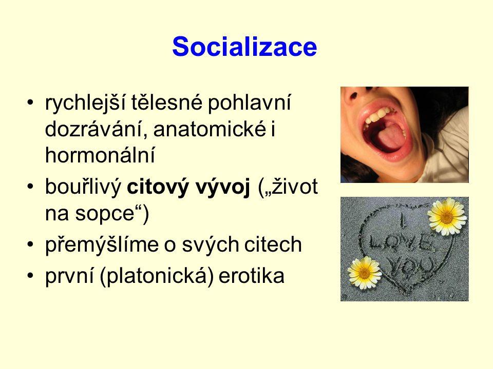 """Socializace rychlejší tělesné pohlavní dozrávání, anatomické i hormonální bouřlivý citový vývoj (""""život na sopce ) přemýšlíme o svých citech první (platonická) erotika"""