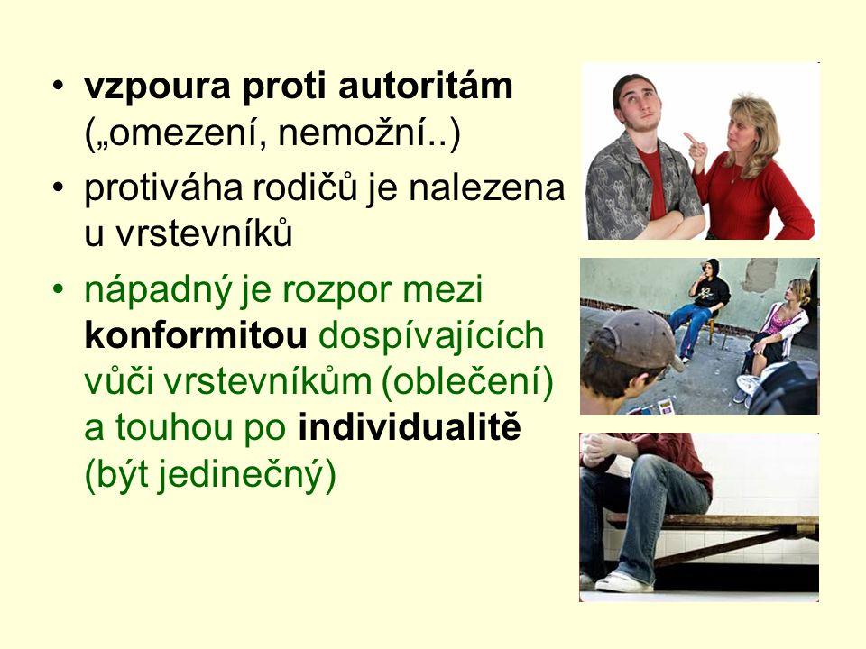 """vzpoura proti autoritám (""""omezení, nemožní..) protiváha rodičů je nalezena u vrstevníků nápadný je rozpor mezi konformitou dospívajících vůči vrstevníkům (oblečení) a touhou po individualitě (být jedinečný)"""