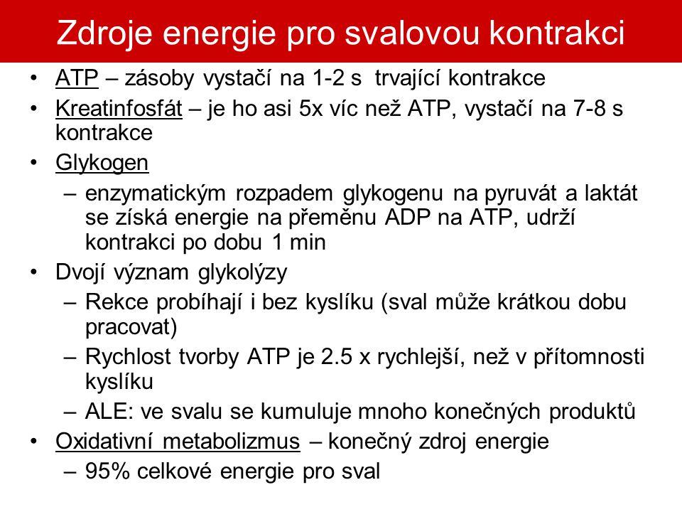 Zdroje energie pro svalovou kontrakci ATP – zásoby vystačí na 1-2 s trvající kontrakce Kreatinfosfát – je ho asi 5x víc než ATP, vystačí na 7-8 s kont
