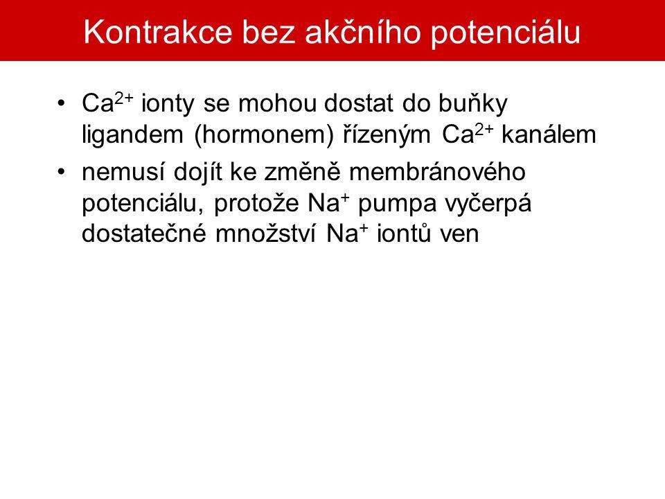 Kontrakce bez akčního potenciálu Ca 2+ ionty se mohou dostat do buňky ligandem (hormonem) řízeným Ca 2+ kanálem nemusí dojít ke změně membránového pot