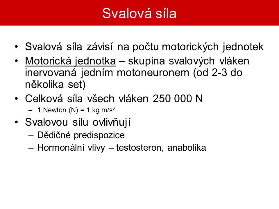 Svalová síla Svalová síla závisí na počtu motorických jednotek Motorická jednotka – skupina svalových vláken inervovaná jedním motoneuronem (od 2-3 do